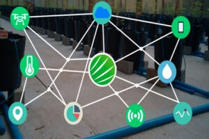 como funciona a Internet das Coisas na Agricultura- elysios