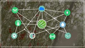Parte 3: O que é e como funciona a Internet das Coisas na Agricultura!