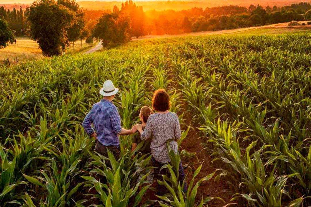 Agricultura-familiar-elysios