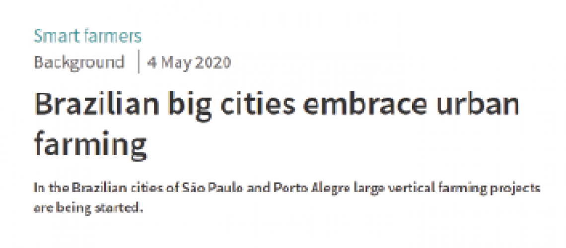 Grandes cidades brasileiras abraçam a agricultura vertical,