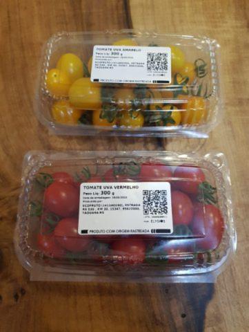 Tomates Grape produzidos e embalados na Ecofruto